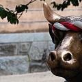 Photos: 牛ですが何か