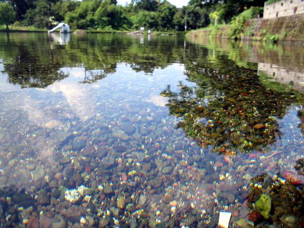 江津湖上流の水遊び場。