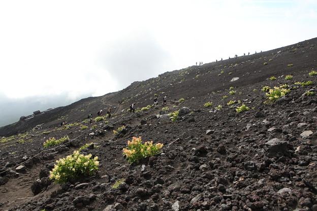 IMG_3941富士山