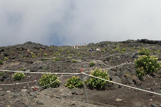 IMG_3943富士山