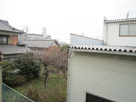 20110116 002