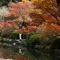 那谷寺 池と紅葉(1)