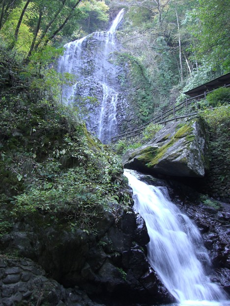 白猪の滝(1)