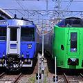 函館駅 北斗183系とスーパー白鳥789系