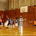 FALCONS 2010.11.28 通常練習@平和島ユース