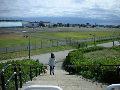 隣の飛行場