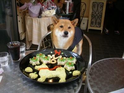 食べて良いの?