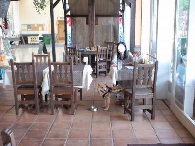 ドッグカフェ MATSU