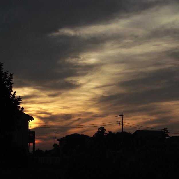 写真: RIMG10591