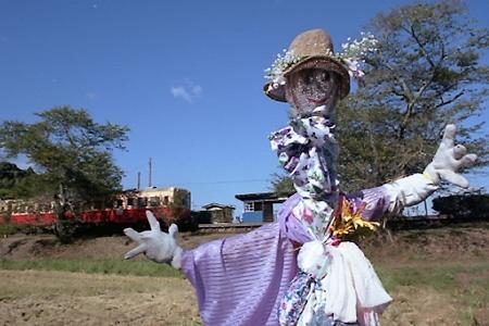 秋の小湊鉄道2010 16