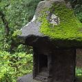 写真: 三渓園・苔むす灯篭