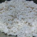 塩麹実験ほぐし